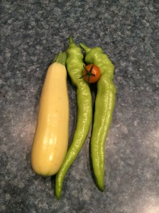 Summer squash, banana peppers, sungold tomato
