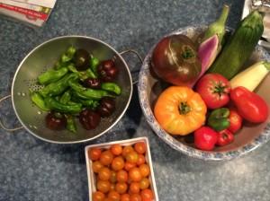 Harvest on 8-14